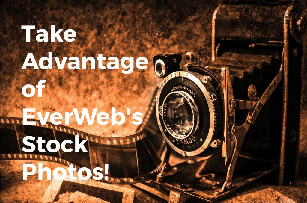 EverWeb Stock Photo Feature