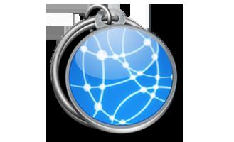 Domainer Icon